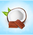 coconut with chocolate vector image