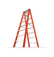 Double Ladder vector image vector image