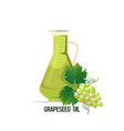 fresh grapeseed oil glass bottle with ripe grape vector image