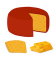 gouda cheese blockpiececartoon flat style vector image vector image