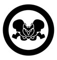 pelvis skeleton black icon in circle isolated vector image