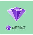 Amethyst flat icon with top view Rich luxury vector image vector image