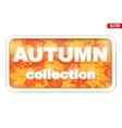 Autumn Collection inscription vector image