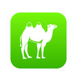 camel icon digital green vector image