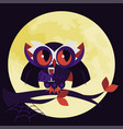 cartoon halloween dracula owl flat poster vector image vector image