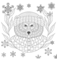 brutal bear in hat flannel shirt in zentangle vector image