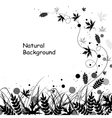 Beautiful natural background vector image vector image