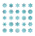 colorful snowflakes isolated on white vector image vector image
