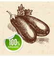Hand drawn sketch vegetable eggplant Eco food vector image vector image