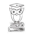 sketch blurred silhouette of owl knowledge with vector image vector image