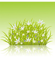 Cartoon of spring grass background vector image