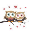 couple of owls in love on a white background vector image vector image