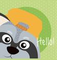 raccoon cute animal cartoon card vector image vector image