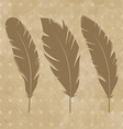 Set vintage feathers vector image vector image