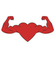 heart with muscular arms vector image
