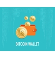 bitcoin wallet with coin icons on the vector image