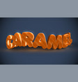 3d typography - caramel vector image vector image