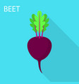 beet icon flat style vector image