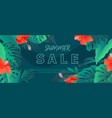 colorful exotic tropic background with monstera vector image