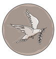 dove with a branch vector image
