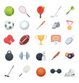 fitness equipment sport balls racket recreation vector image
