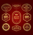 gold frames premium labels and logos set vector image