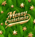 Golden Christmas greeting and stars vector image vector image