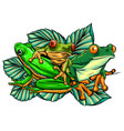 green frog in different pose vector image
