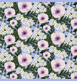 white poppy and alyssum flowers vector image