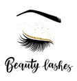 beauty lashes vector image vector image