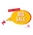 big sale megaphone banner isolated on white vector image