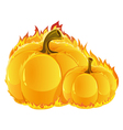 Burning pumpkins vector image