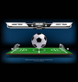 football or soccer playing field with infographic vector image vector image