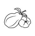 quince fruit icon design sign vector image vector image