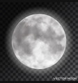 realistic beautiful moon on transparent vector image vector image