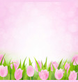 spring pink tulip vector image vector image