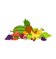 sweet delicious fruits and berries in big heap vector image