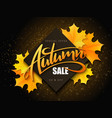 Autumn sale banner with hand lettering and