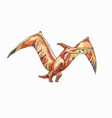 flying pterodactyl drawing by watercolor vector image vector image