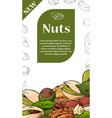natural nuts and seeds template hand drawn vector image