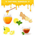 natural remedies vector image vector image