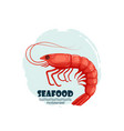 red shrimp seafood restaurant label with splash vector image
