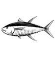 yellowfin tuna black and white fish vector image vector image