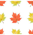 autumn seamless pattern maple leaves on a white vector image
