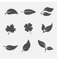 collection images leaves trees and plants vector image vector image