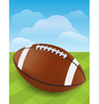 Football on Green Field vector image vector image