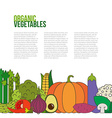 Fresh Vegetables Concept vector image