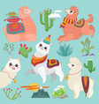 set cute alpaca lama and desert vector image vector image