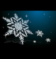 snowflake on blue vector image