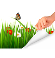 Spring background with flowers grass and a hand vector image vector image